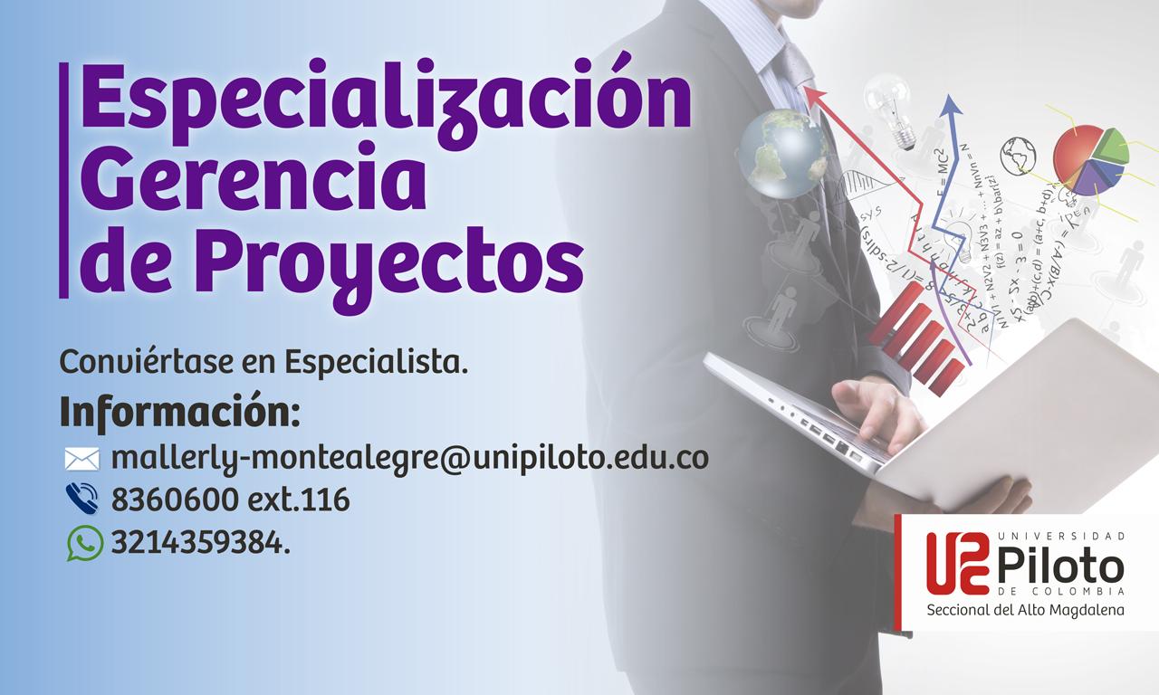 Especialización en Gerencia de Proyectos