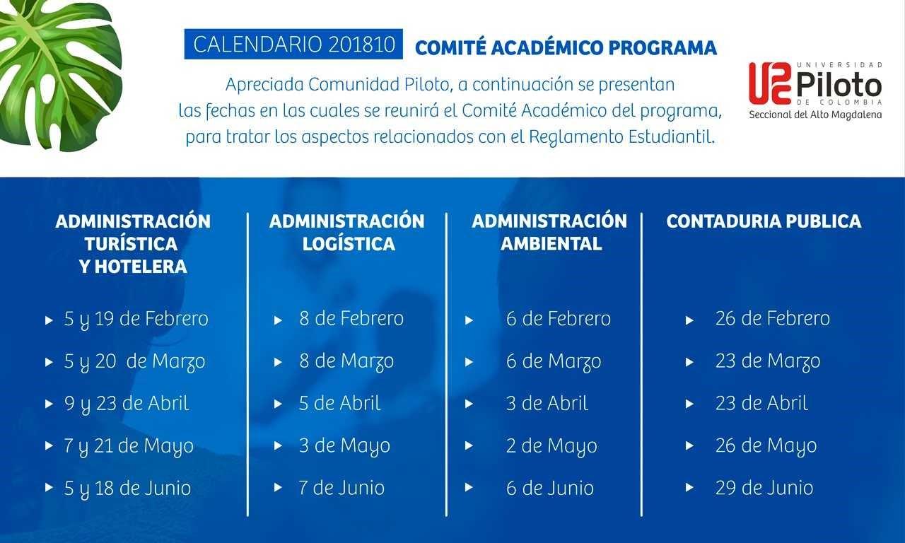 comite_academico_programas
