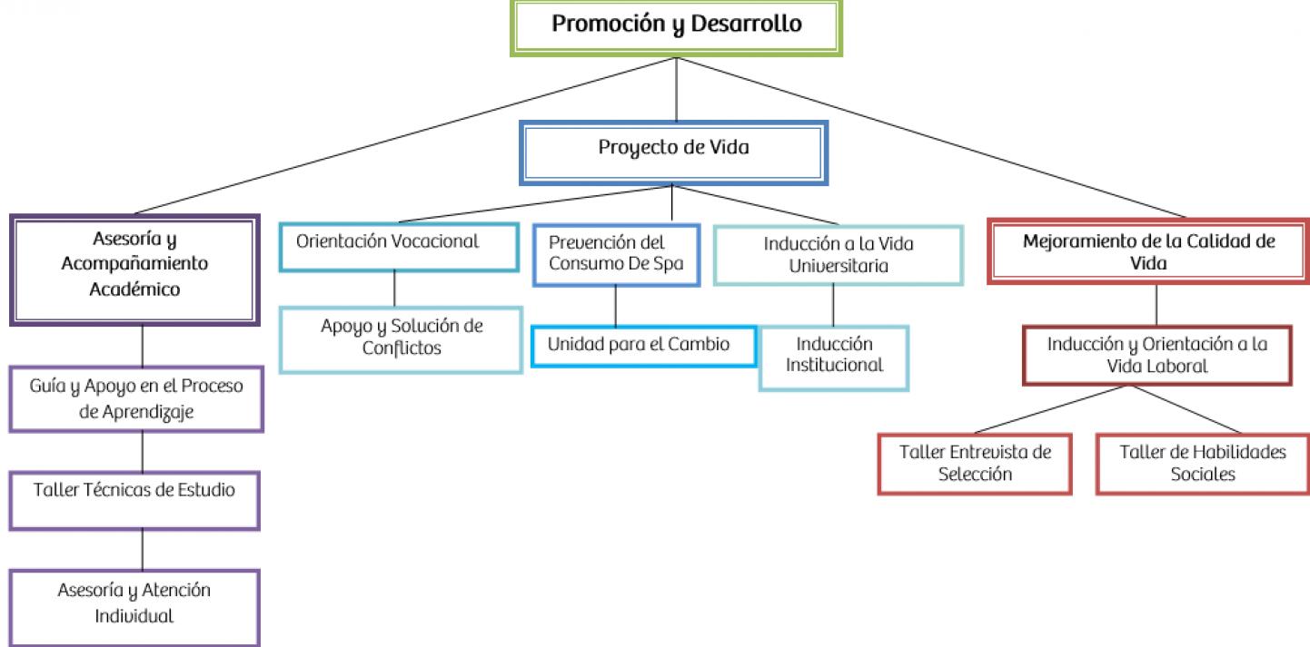 diagrama_plan_desarrollo